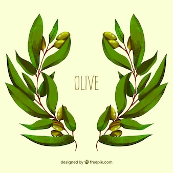 Background of olive branches in watercolor style