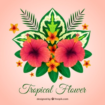 Background of pretty tropical flowers with leaves