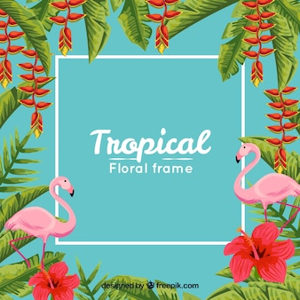 Background of tropical frame with leaves and flamingos