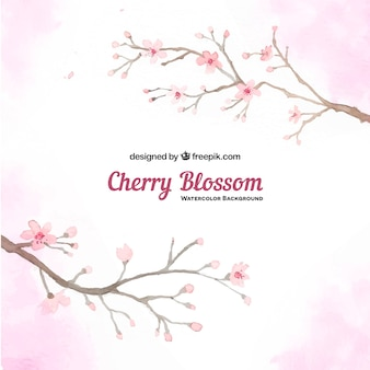 Background of watercolor cherry tree branches
