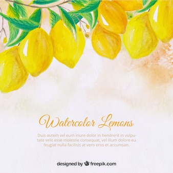 Background of watercolor lemons