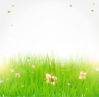 Background over sunlight wave flower