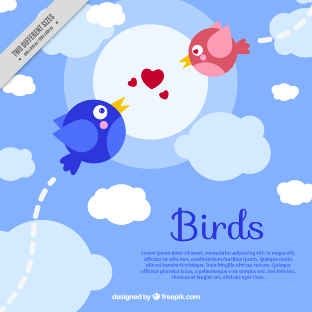 Background with birds in love