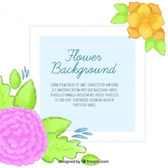 Background with hand painted floral details