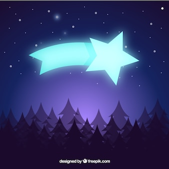 Background with landscape of pines and shooting star