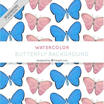 Background with pink and blue butterflies