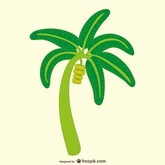 Banana tree illustration