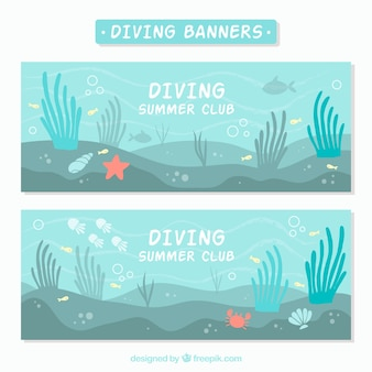 Banners of sea bottom