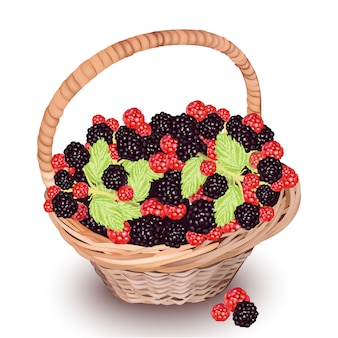 Basket with berries background