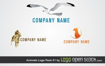 Beach animal footage logo vector