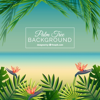 Beach background with palm leaves and flowers