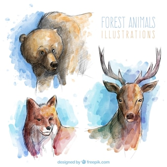 Beautiful and realistic forest animals in watercolor effect