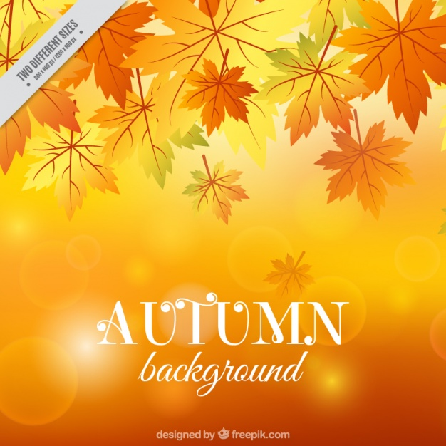Beautiful autumn background with bokeh effect