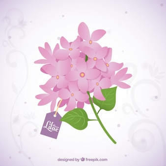 Beautiful bouquet of lilac flowers with a tag