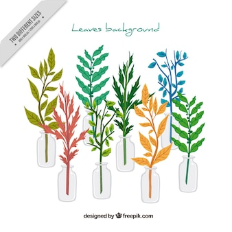 Beautiful branches of leaves in vases background