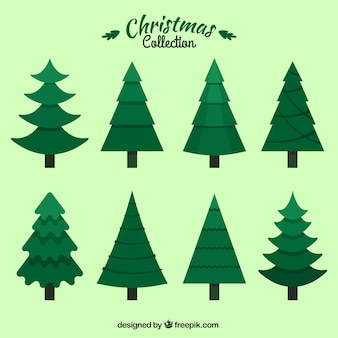 Beautiful collection of christmas tree