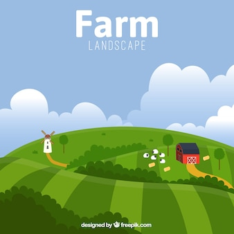 Beautiful farm landscape with barn and sheeps