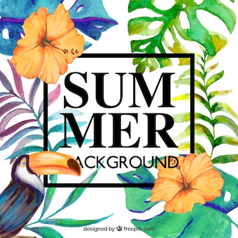 Beautiful floral background for summer