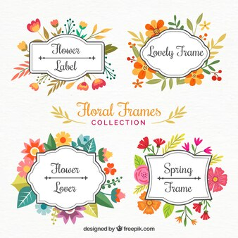Beautiful flowers frames painted with watercolors
