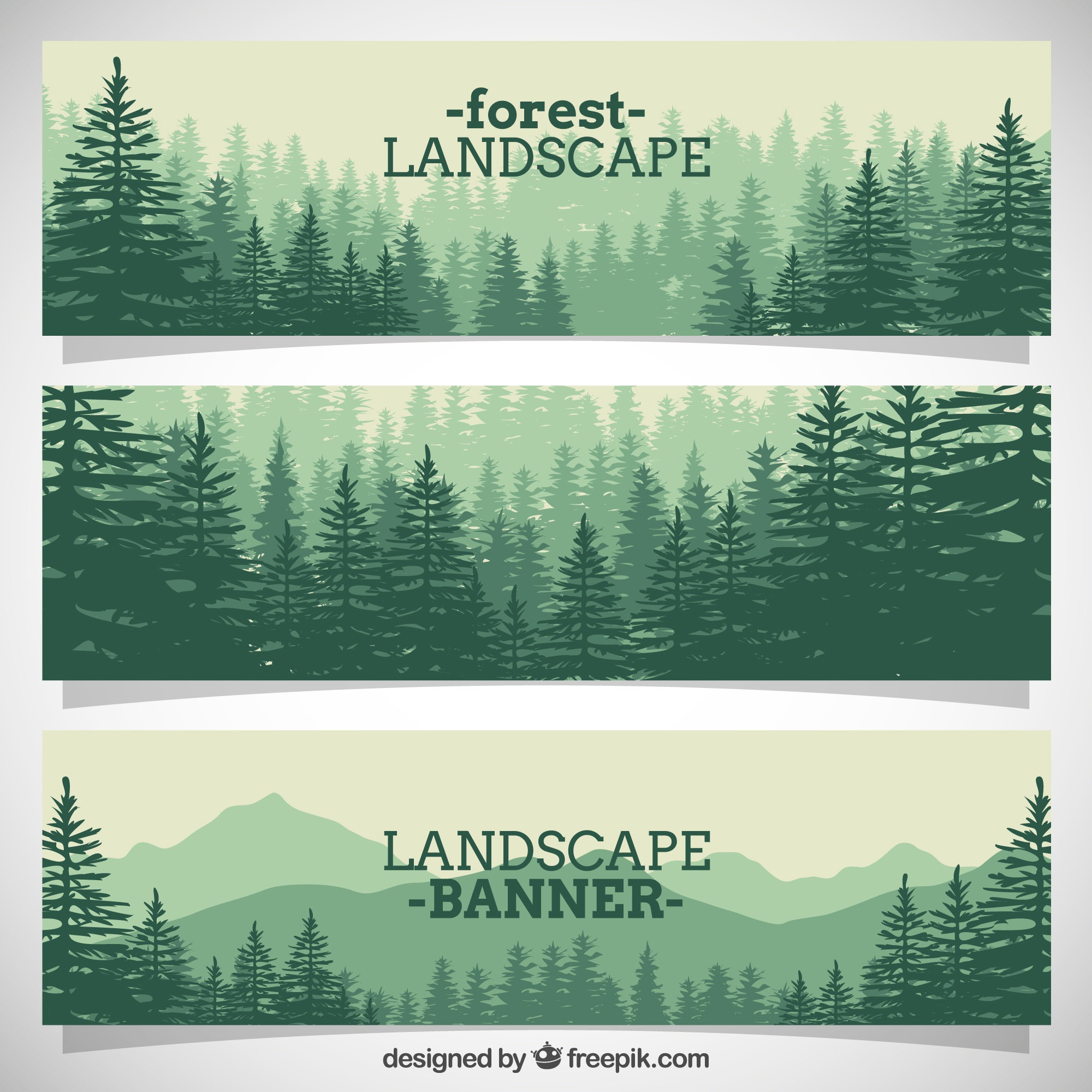 Beautiful forest full pines banners