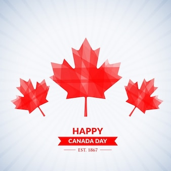 Beautiful happy canada day background