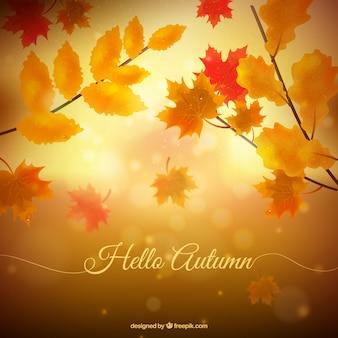 Beautiful hello autumn background