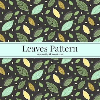 Beautiful leaves pattern