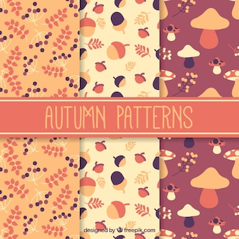 Beautiful patterns with autumnal elements