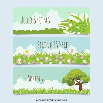Beautiful spring banners with grass