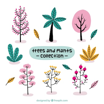 Beautiful trees and hand drawn plants