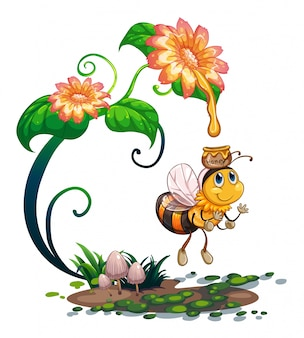 Bee collecting honey from the flower