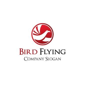 Bird flying logo