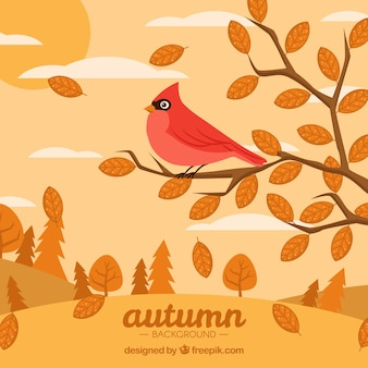Bird on branches with flat design