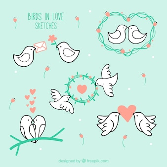 Birds in love sketches