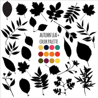 Black Autumn Leaves Collection