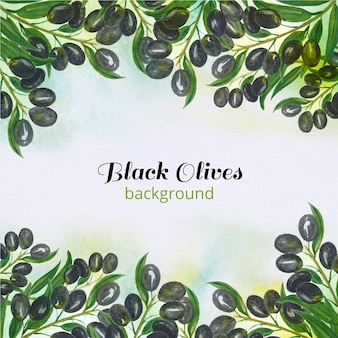 Black olives background