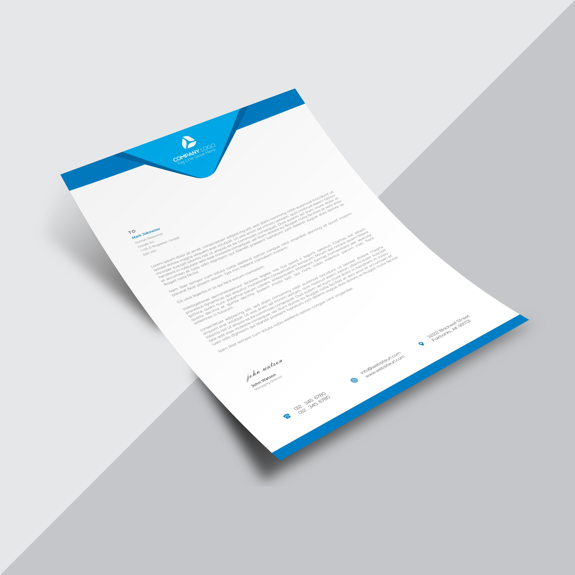 Blue and white business document