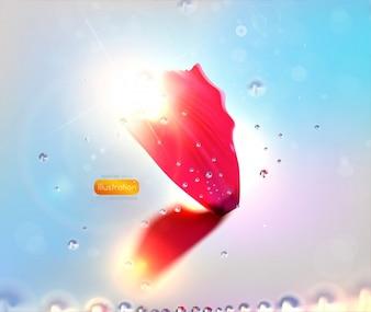 Blur text frame floral sun