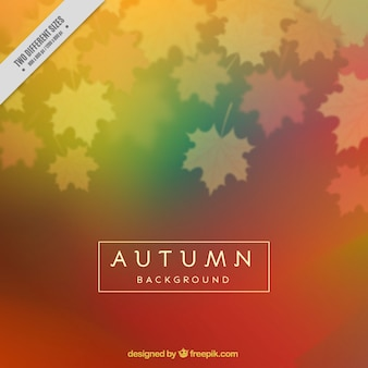 Blurred autumnal background of dry leaves