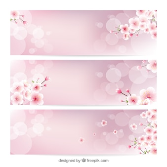 Blurred banners with decorative cherry blossoms
