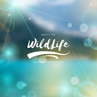 Blurred wildlife background