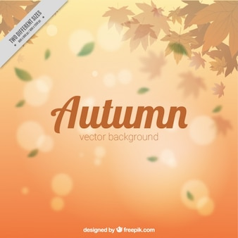 Blurry autumnal background with leaves