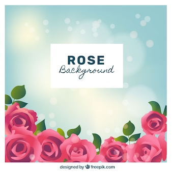 Bokeh background of pink roses