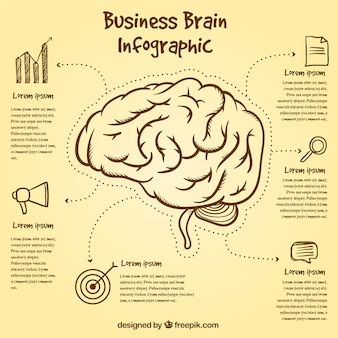 Brain infographic template with hand-drawn items