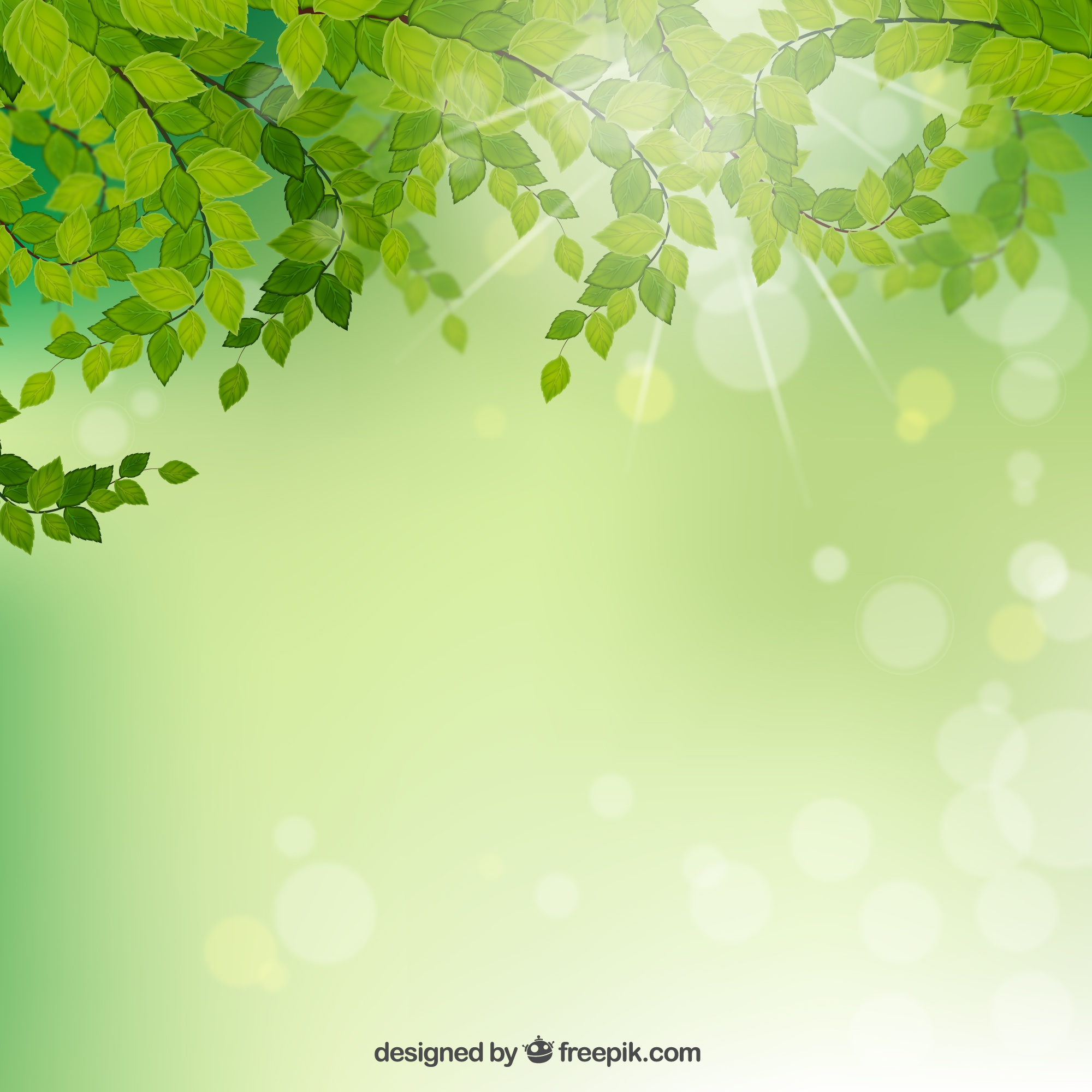 Branches with green leaves background