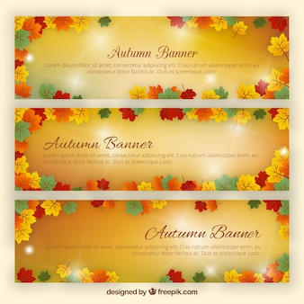 Bright autumn banners