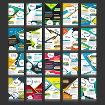 Business brochure set