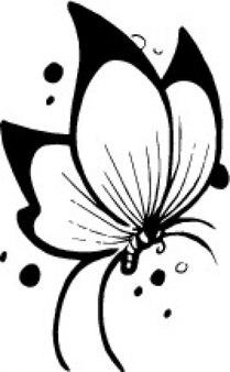 Butterfly like a flower