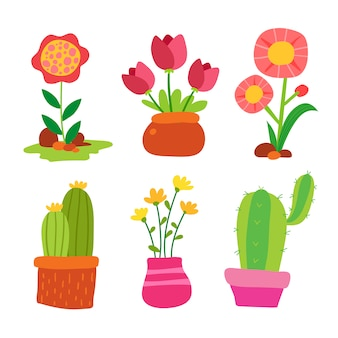 Cactus and flowers collection