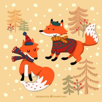 Cartoon winter foxes